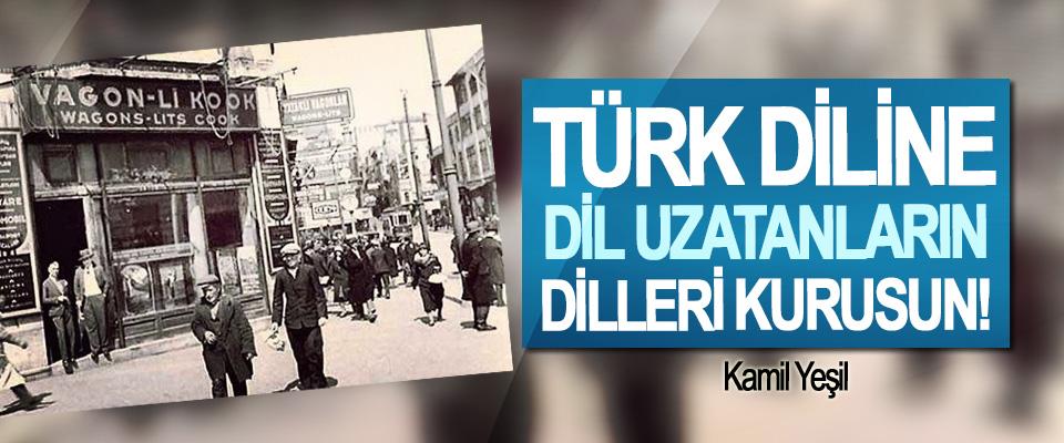 Türk diline dil uzatanların dilleri kurusun!