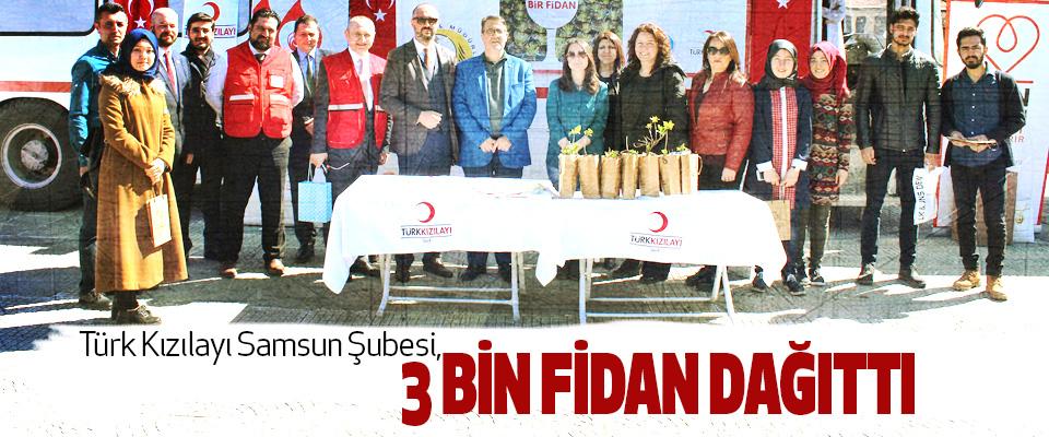Türk Kızılayı Samsun Şubesi, 3 Bin Fidan Dağıttı