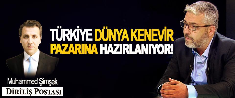 Türkiye dünya kenevir pazarına hazırlanıyor!