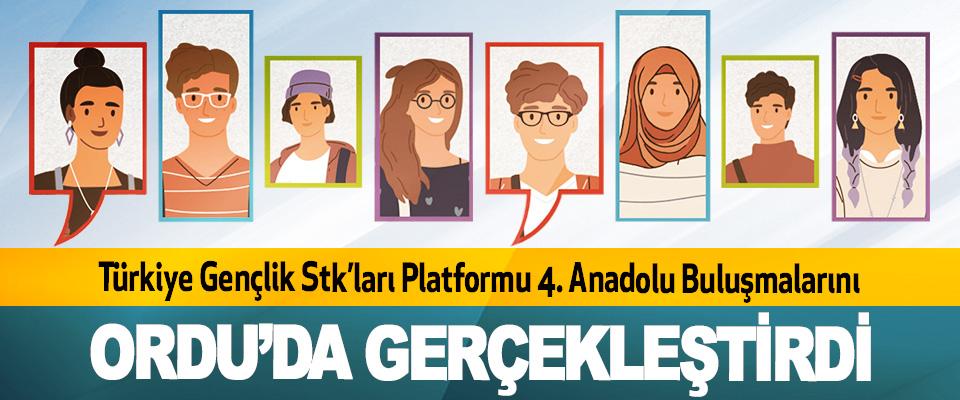 Türkiye Gençlik STK'ları Platformu 4. Anadolu Buluşmalarını Ordu'da Gerçekleştirdi