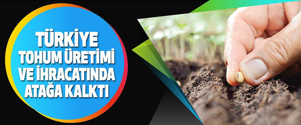 Türkiye, Tohum Üretimi Ve İhracatında Atağa Kalktı