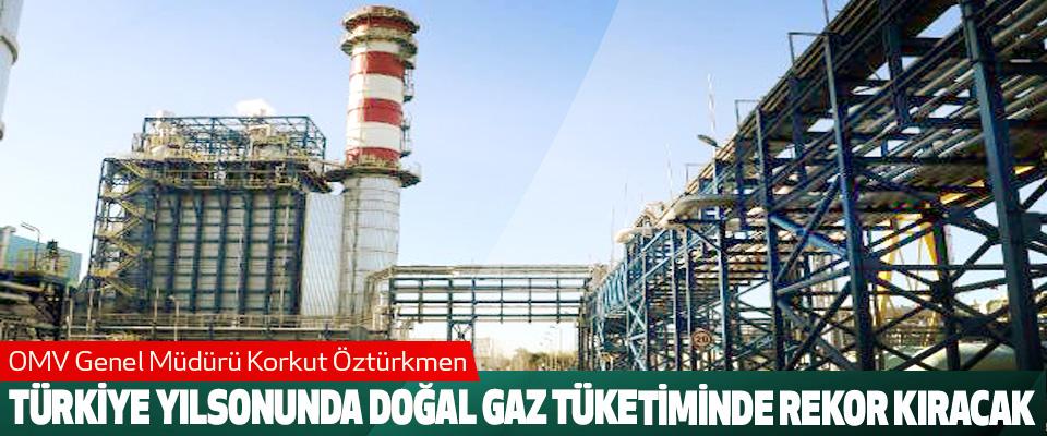 Türkiye Yılsonunda Doğal Gaz Tüketiminde Rekor Kıracak