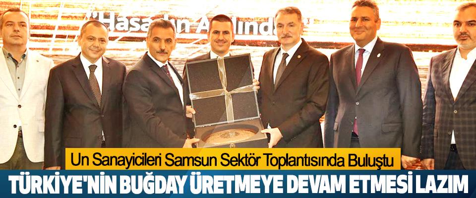 Türkiye'nin Buğday Üretmeye Devam Etmesi Lazım