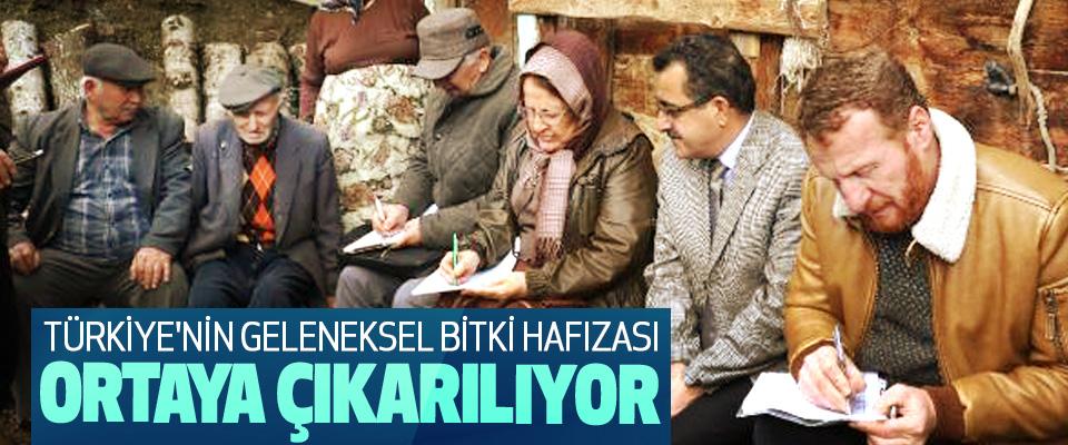 Türkiye'nin Geleneksel Bitki Hafızası Ortaya Çıkarılıyor