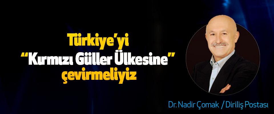 """Türkiye'yi """"Kırmızı Güller Ülkesine"""" çevirmeliyiz"""