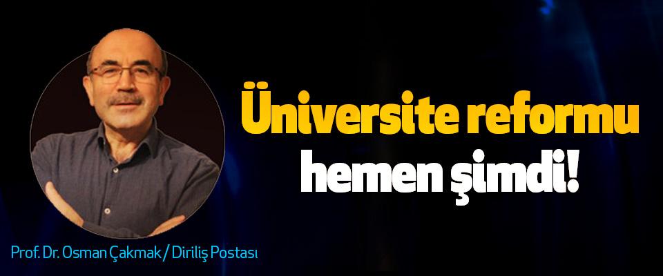 Üniversite reformu, hemen şimdi