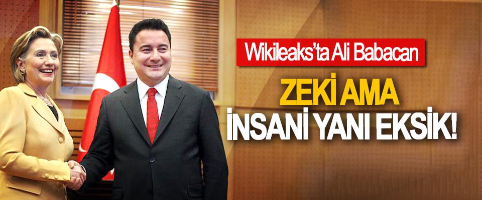 Wikileaks'ta Ali Babacan, Zeki ama insani yanı eksik!