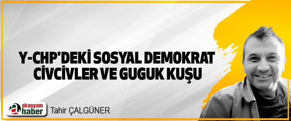 Y-CHP'deki Sosyal Demokrat Civcivler Ve Guguk Kuşu