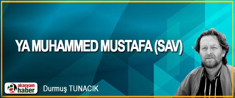 Ya Muhammed Mustafa (Sav)