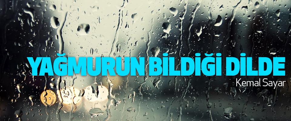 Yağmurun Bildiği Dilde