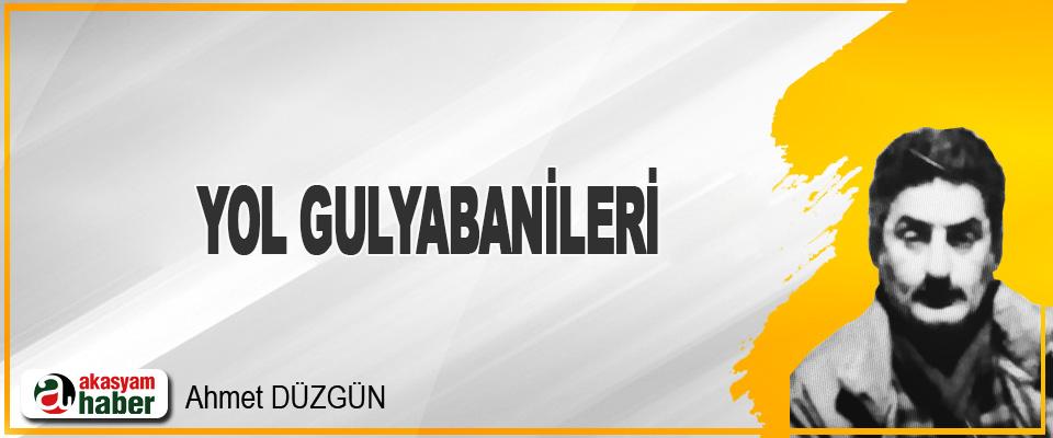 Yol Gulyabanileri