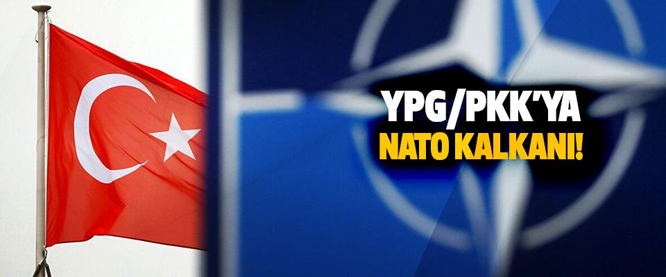 YPG / PKK'ya NATO Kalkanı!
