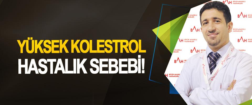 Yüksek kolestrol hastalık sebebi!