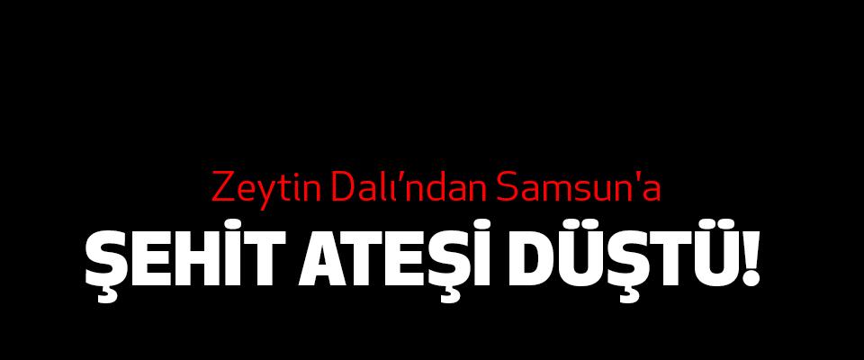 Zeytin Dalı'ndan Samsun'a Şehit Ateşi Düştü!