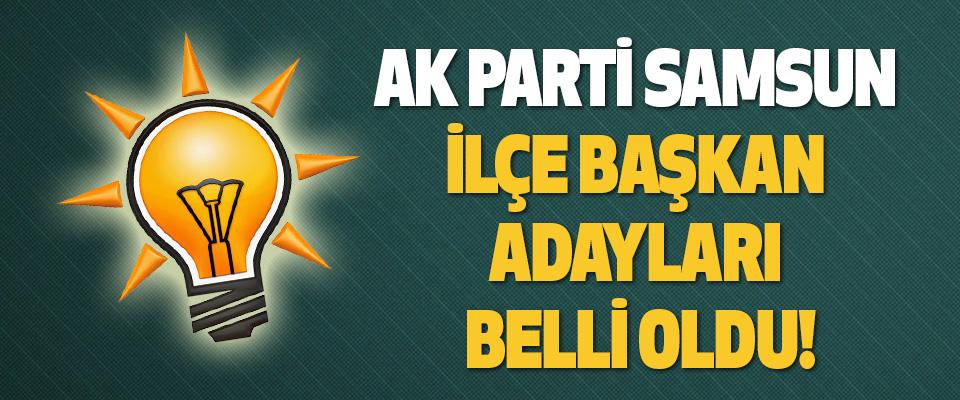 Ak Parti Samsun İlçe Başkan Adayları Belli Oldu!