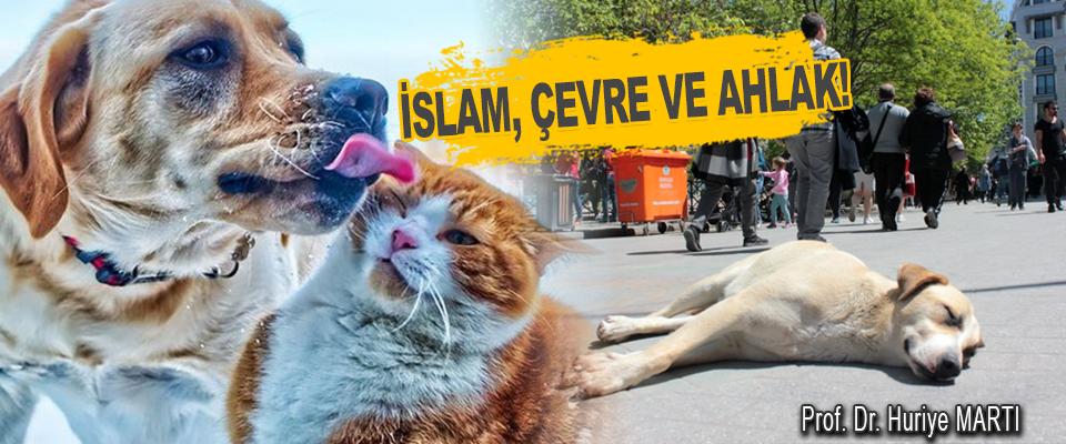 İslam, Çevre Ve Ahlak!