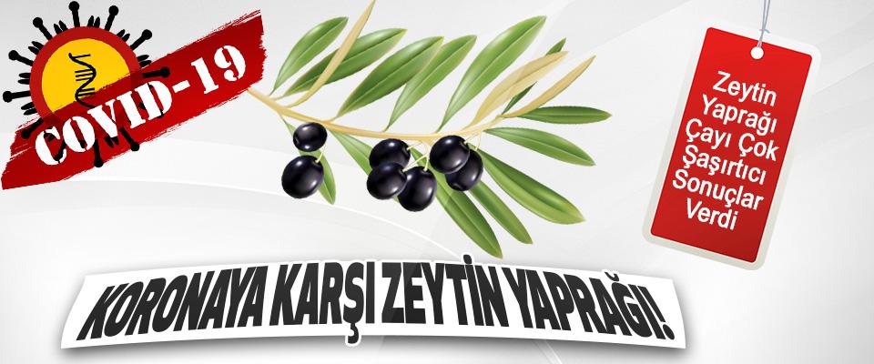 Koronaya Karşı Zeytin Yaprağı!