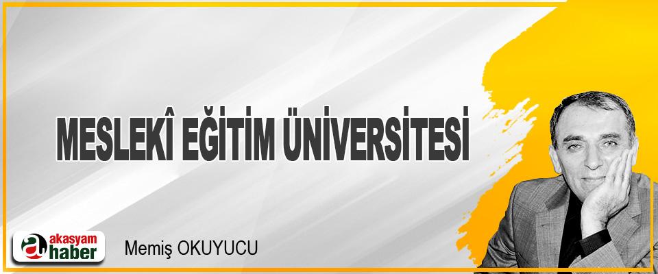 Meslekî Eğitim Üniversitesi