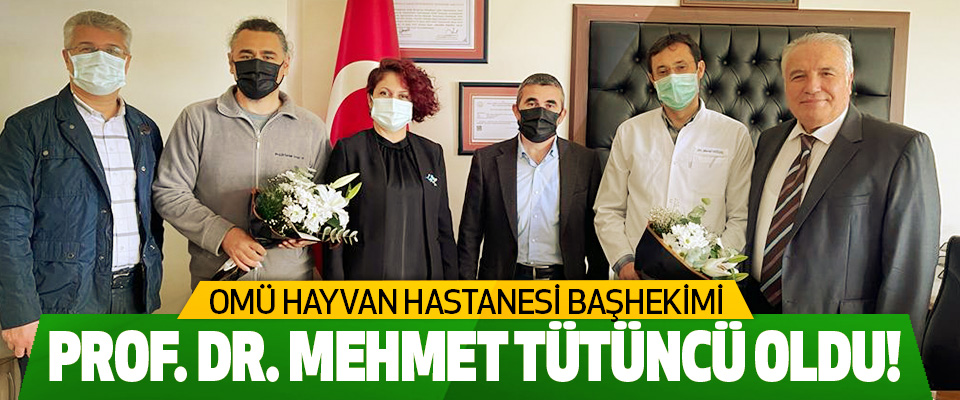 OMÜ Hayvan Hastanesi Başhekimi  Prof. Dr. Mehmet tütüncü oldu!