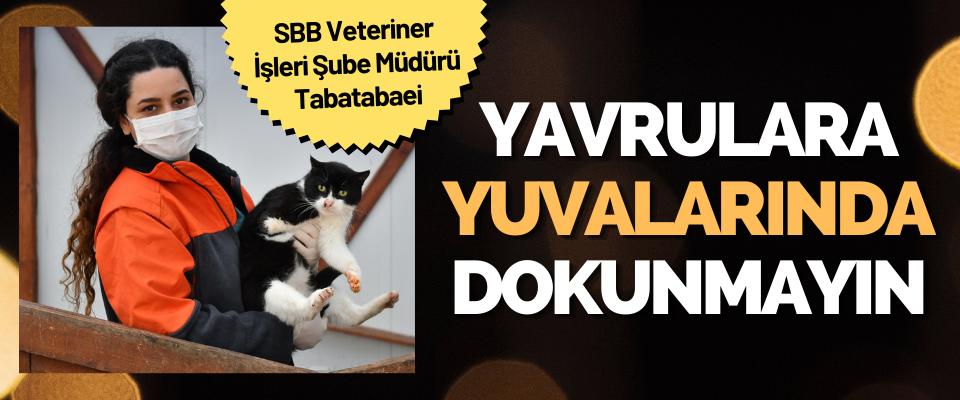 Samsun BB Veteriner İşleri Şube Müdürü Tabatabaei
