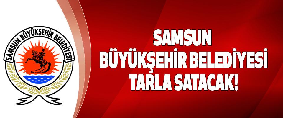 Samsun Büyükşehir Belediyesi Tarla Satacak!