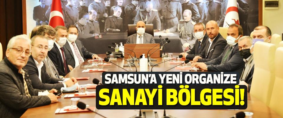 Samsun'a yeni organize sanayi bölgesi!