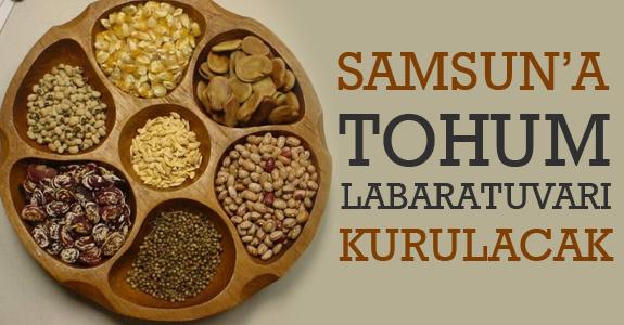 Samsun'a tohum laboratuarı