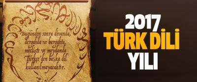 2017 Türk Dili Yılı
