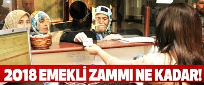 2018 Emekli Zammı Ne Kadar!