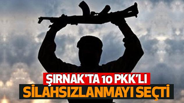 Şırnak'ta 10 Pkk'lı Silahsızlanmayı Seçti