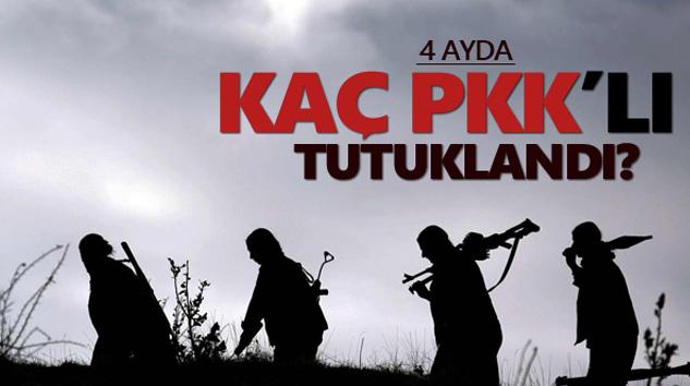4 Ayda Kaç PKK'lı Tutuklandı?