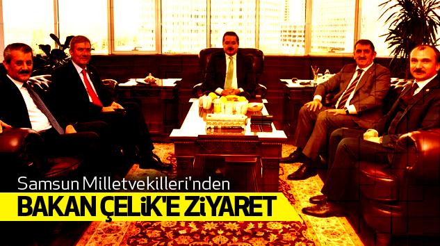 Samsun Milletvekilleri'nden Bakan Çelik'e Ziyaret..