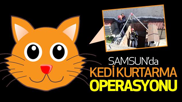 Samsun'da Kedi Kurtarma Operasyonu...