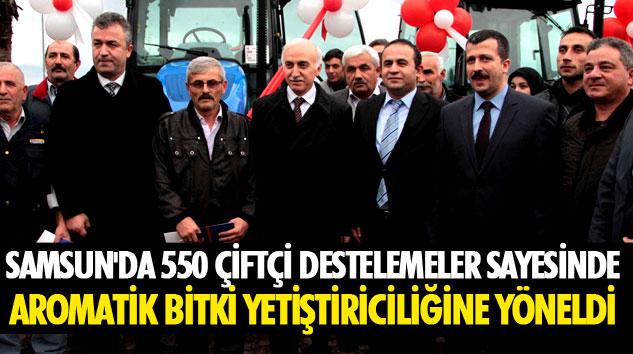 Samsun'da 550 Çiftçi Destelemeler Sayesinde Aromatik Bitki Yetiştiriciliğine Yöneldi