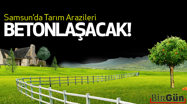 Samsun'da tarım arazileri betonlaşacak!