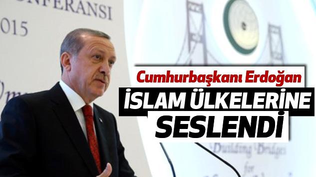 Erdoğan, İslam Ülkelerine Seslendi