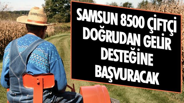 Samsun 8500 Çiftçi Doğrudan Gelir Desteğine Başvuracak