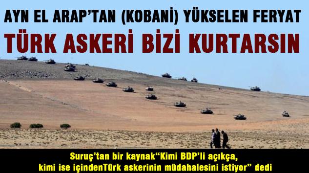 Ayn el arap'tan (kobani) yükselen feryat Türk askeri bizi kurtarsın
