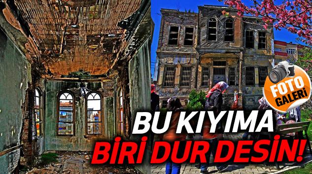 Samsun'daki Bu kıyıma biri dur desin!