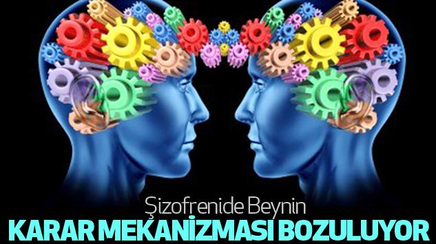 Şizofrenide Beynin Karar Mekanizması...