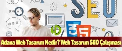 Adana Web Tasarım Nedir? Web Tasarım SEO Çalışması