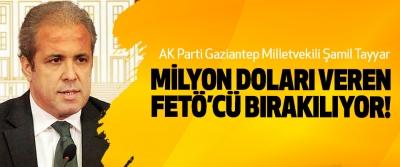 AK Parti Gaziantep Milletvekili Şamil Tayyar: Milyon doları veren FETÖ'CÜ bırakılıyor!