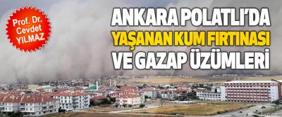 Ankara Polatlı'da Yaşanan Kum Fırtınası  Ve Gazap Üzümleri