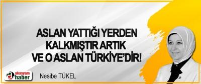 Aslan yattığı yerden kalkmıştır artık ve o aslan Türkiye'dir!
