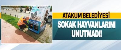Atakum Belediyesi Sokak Hayvanlarını Unutmadı!
