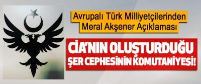 Avrupalı Türk Milliyetçilerinden Meral Akşener Açıklaması