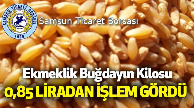 Samsun Ticaret Borsası'nda Ekmeklik Buğdayın Kilosu 0,85 Liradan İşlem Gördü