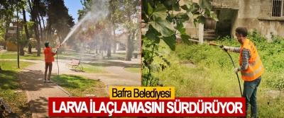 Bafra Belediyesi Larva İlaçlamasını Sürdürüyor