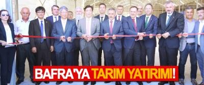 Bafra'ya tarım yatırımı!