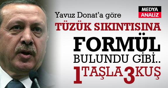 Yavuz Donat: Erdoğan 1 taşla 3 kuş vuracak